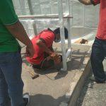 Ahli Instalasi Gas Medis Rumah Sakit Darurat COVID di Boyolali Jawa Tengah